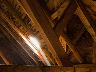 Attic Cleaning | Crawl Space Cleaning Los Angeles, CA