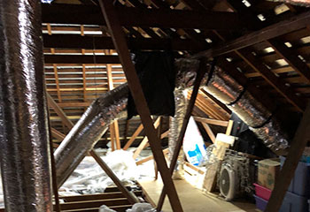 Attic Insulation Removal Project | Crawl Space Cleaning Los Angeles, CA