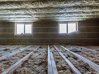 The Difference Between an Attic Cleaning and Decontamination | Crawl Space Cleaning Los Angeles, CA